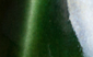 Gloss Oribe Green